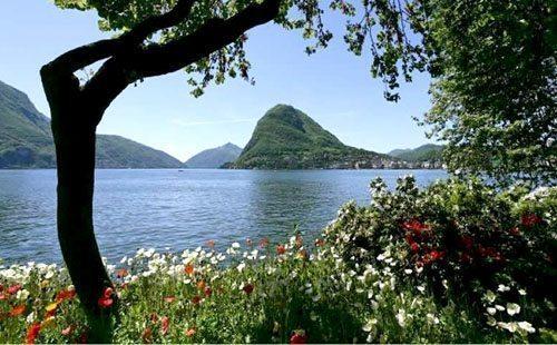 Scorcio lago Lugano dai nostri appartamenti del residence La Residenza