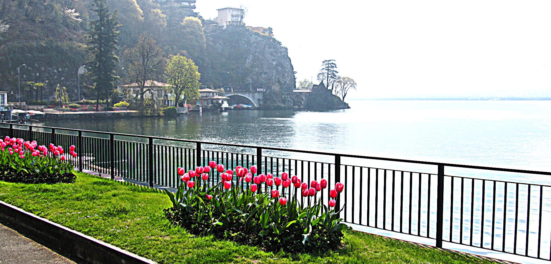 Appartamenti in affitto a Lugano
