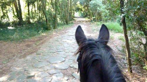 Per gli appassionati di equitazione: appartamenti con affitto settimanale a Lugano